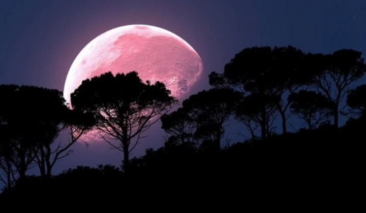 A Super Pink Moon May Appear In Malaysia On April 8 - The Rakyat Post